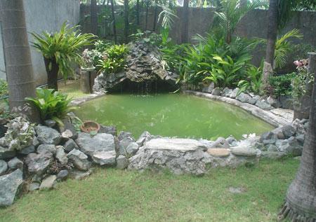 Xigega 39 s koi pond featured koi ponds in for Koi pond gallons